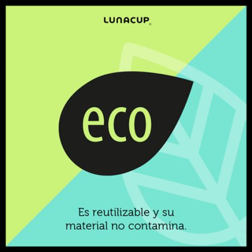 Caracteristicas eco