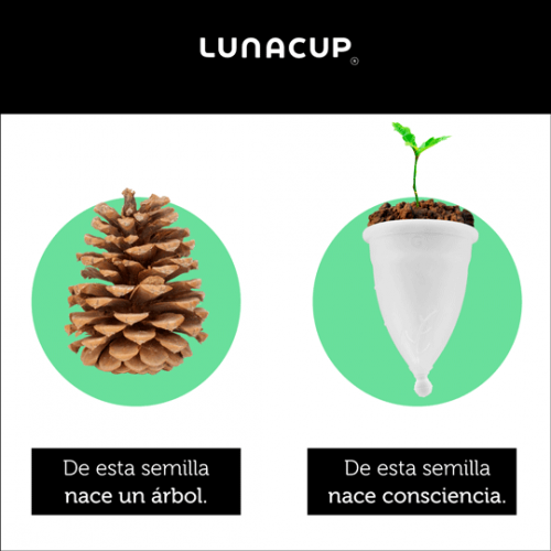 lunacup semillas b